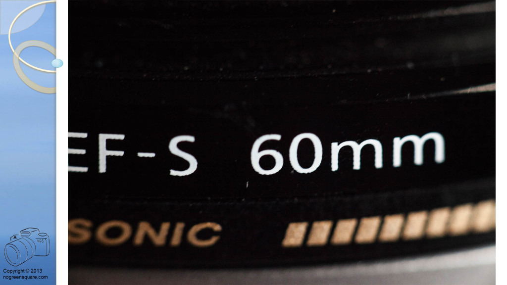 Macro Lens and Extension Tubes